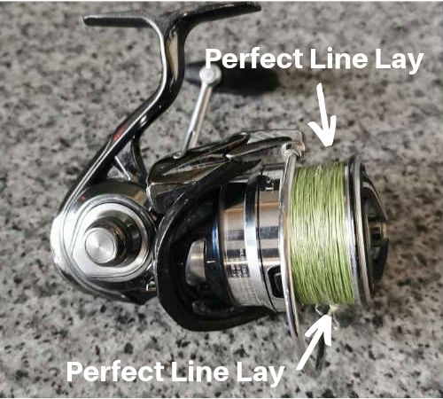 5 best bass lure reels for the money
