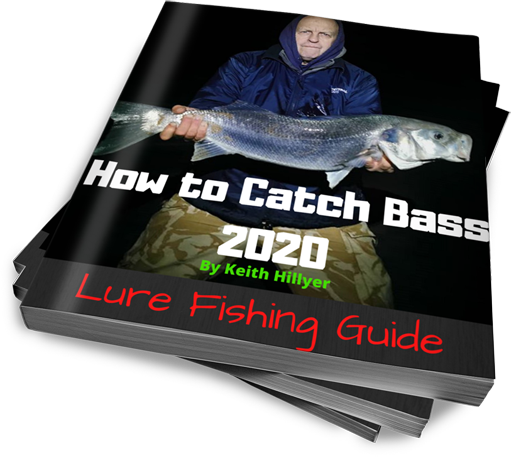 How To Catch Bass 2020